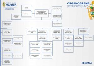Organograma da Semmas Imagem