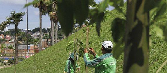 Prefeitura entrega arborizada a Praça Raimundo Vinhote no Petrópolis