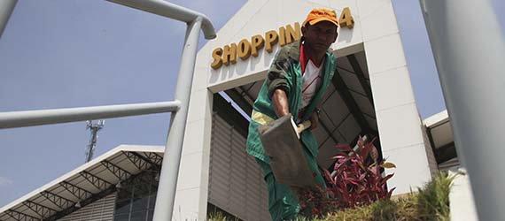 Shopping T4 recebe ações de manutenção da arborização e paisagismo