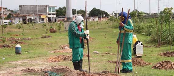 Corredor do Mindu recebe mais 1,5 mil mudas de árvores dentro do Arboriza Manaus