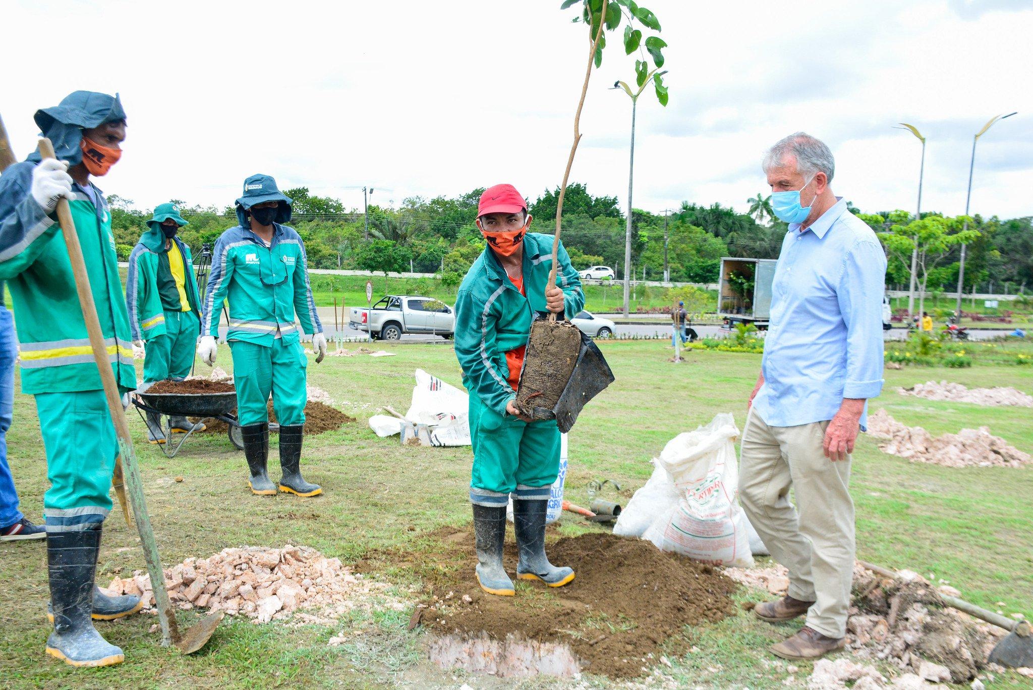Com 'Manaus Verde', Prefeitura de Manaus pretende plantar dez mil mudas de árvores em 2021